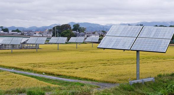 営農太陽光発電の写真